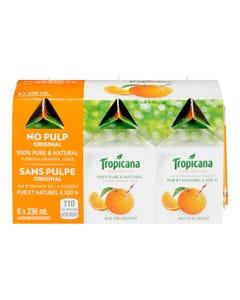 Tropicana Original Orange Juice No Pulp 6X236ML