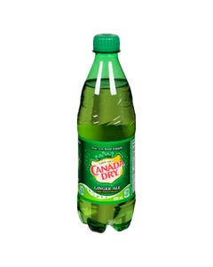 Canada Dry Gingerale 500ML