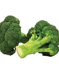 Broccoli 1.5lb