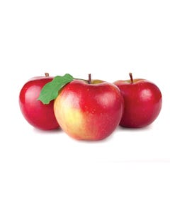 Apples McIntosh Bag 3LB