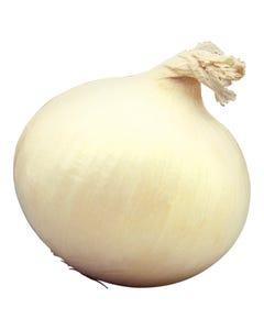 White Onions PER KG
